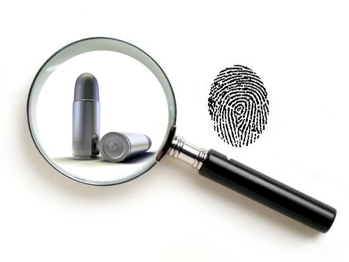 Ballistic Fingerprint Database
