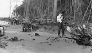 Colonial Parkway Murders 1